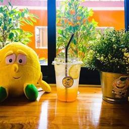 Lemonster Cafe เลมอนสเตอร์ คาเฟ่
