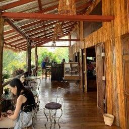 Gong cafe & Cocoricooo