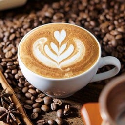 Hazel Taste Coffee