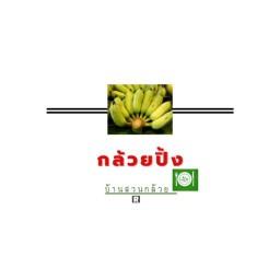 กล้วยปิ้งบ้านสวนกล้วยปัตตานี บ้านสวนกล้วยสาขาปัตตานี