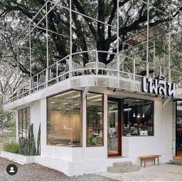 Plearn cafe : เพลิน คาเฟ่ หลังมช. หลัง มช.
