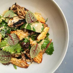 Tempeh & Mushroom Salad (Vegan)