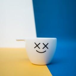 SINGLE CUP