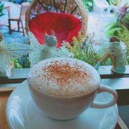 Ducky Coffee