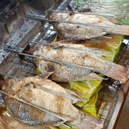 ลุงวิทย์ ปลาเผา ไฮเทค