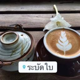 กาแฟระบัดใบ