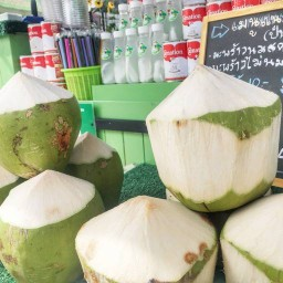 Nicha coconut cafe' premium