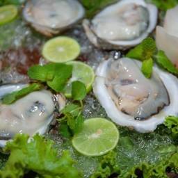 หอยนางรม เซต
