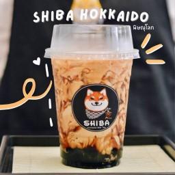 Shiba Hokkaido Milk Tea พิษณุโลก