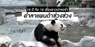 """16 ปี กับ 16 เรื่องราวน่าจดจำ """"ช่วงช่วง"""" แพนด้าขวัญใจชาวไทย"""