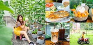 [รีวิว] Silver Valley คาเฟ่นครศรีธรรมราช กินผัก พักผ่อนไปกับธรรมชาติ