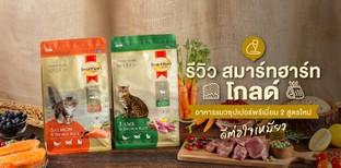 รีวิว สมาร์ทฮาร์ท โกลด์ อาหารแมวซุปเปอร์พรีเมี่ยม 2สูตรใหม่ได้ใจเหมียว