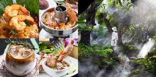 [รีวิว] Chom cafe and restaurant เชียงใหม่ ลิ้มอาหารในสวนสวยที่ดีต่อใจ