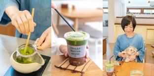 ให้ทุกอย่างเป็นสีเขียว @Tealily Cafe คาเฟ่ชาเขียวแสนอบอุ่นย่านเอกมัย