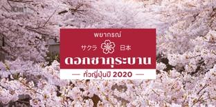 พยากรณ์ดอกซากุระบานทั่วญี่ปุ่นปี 2020