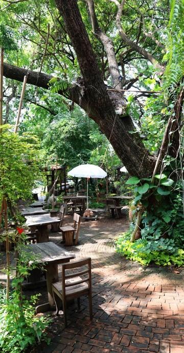 ร้านคาเฟ่อาหารไทย ที่เน้นผักออแกนิกและเมนูง่าย ๆ เหมือนกินข้าวอยู่บ้าน ท่ามกลางบรรยากาศในสวนใหญ่ที่ไม่ว่าจะหันไปทางไหนก็เจอแต่สีเขียว
