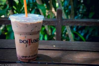 Cafe DoiTung โครงการพัฒนาดอยตุง