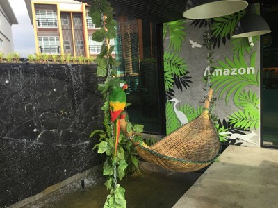 Cafe' Amazon The One Place