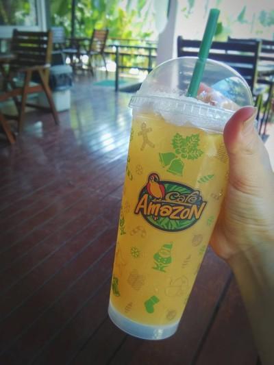 Amazon Fruit Tea Paradise
