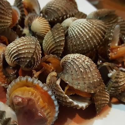 หอยแครงลวก สด หวาน อร่อย น้ำจิ้มแซบๆ
