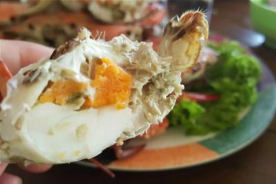 ปูม้าไข่