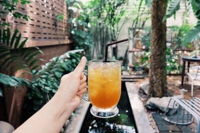 Coffee Tree (คอฟฟี่ ทรี)