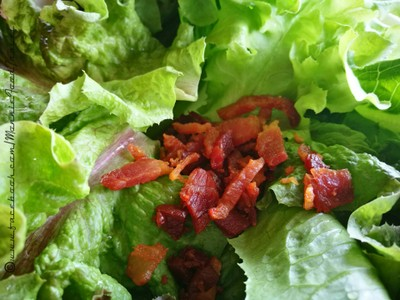 Hydroponic Salad