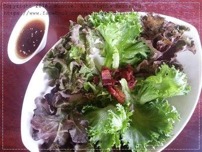 hydroponic Salad2