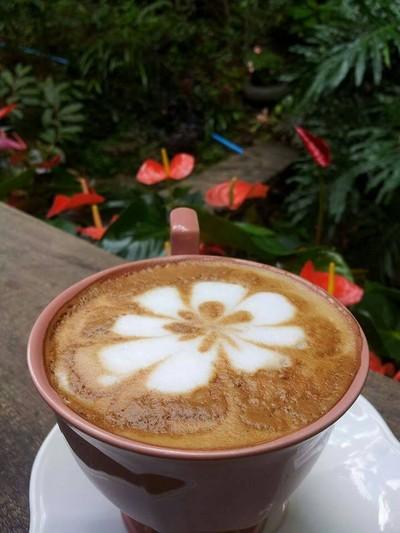 ลุงปุ๊ด&ป้าเป็ง Coffee