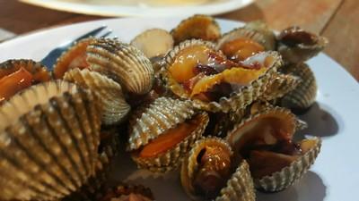 หอยแครง