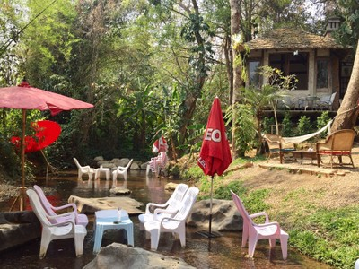 Zombie Cafe' Maerim Chiangmai