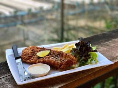 เนื้อปลาชิ้นใหญ่ มาพร้อมผักสลัดปลูกเอง คุ้มเกินราคา