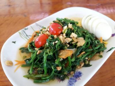 ครัวผักหวานบ้าน ไร่นฤบดินทร์ สาขา 1 แสงชูโต