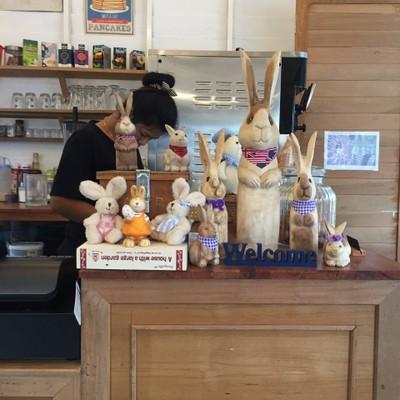 Rabbit Cafe Pai