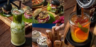 คาเฟ่ดีในสวนเฟิร์น จิบกาแฟเพลินสบายใจ ที่ Fernpresso Cafe เชียงใหม่