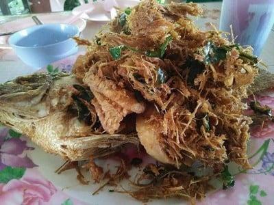 เมนูปลา - แม่จัน เชียงราย (Menu plaa)