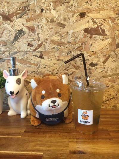 Box Box Dog Cafe สาขา2 มช