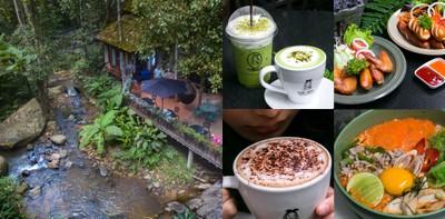 วันหนึ่งฉันเดินเข้าป่า ฉันเจอร้านกาแฟชิลล์ๆ ที่ Teddu Coffee เชียงใหม่