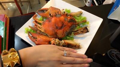 ปูจัมโบ้นึ่ง กิโล ล่ะ 1,800บาท / ตัวเล็กไช3-4ขีด ตัวล่ะ 440บาท ที่ ร้านอาหาร กวงทะเลเผา