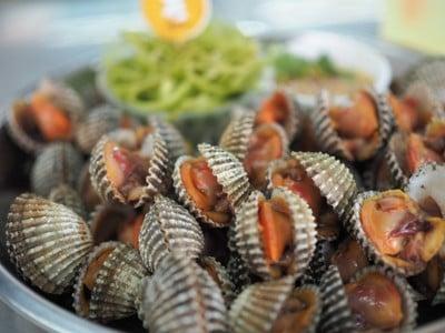 หอยเเครงลวก ถนัดหอย (Tanadhoy) มีสาขาเดียว ฟู้ดวิลล่า ราชฟฤกษ์