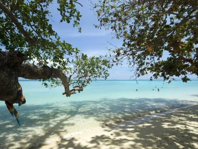 โครัลการ์เด้นรีสอร์ท (Coral Garden Resort)