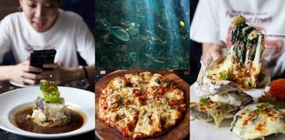 The Abyss ร้านอาหารนานาชาติย่านวิภาวดีรังสิต ที่พาคุณดำดิ่งใต้ทะเลลึก!