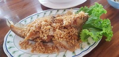 ปลาเนื้ออ่อนทอดกระเทียมปลาตัวใหญ่ได้เนื้อสดเสมอครับ