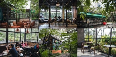 Café Amazon ใจป้ำ! ชวนประกวดภาพถ่าย ลุ้นตั๋วบินไปชมแสงเหนือแบบฟรี ๆ