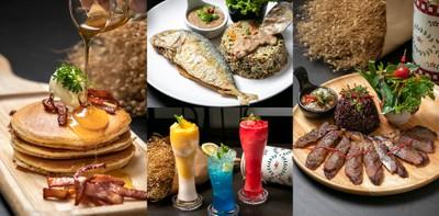อาหารมุสลิมไม่ใช่แค่ข้าวหมกไก่ Choei Cafe เชียงใหม่ มิติใหม่แห่งฮาลาล