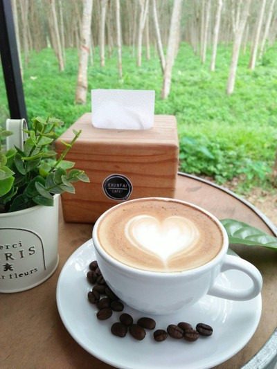 khunfai cafe' (สวนคุณฝ้าย คาเฟ่)