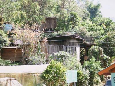"""""""ปางมะโอ"""" หมู่บ้านในแอ่งกระทะ กลางหุบเขาเชียงดาว"""