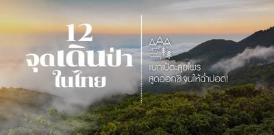 12 จุดเดินป่าในไทย แบกเป้ตะลุยไพร สูดออกซิเจนให้ฉ่ำปอด!