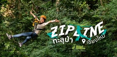 Flight of the Gibbon เชียงใหม่ Zipline ในป่าใหญ่ที่สนุกมันจนลืมกลัว