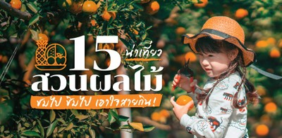 """""""15 สวนผลไม้น่าเที่ยว"""" ชมไป ชิมไป เอาใจสายกิน!"""